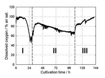 Graph of DO measured in S. tendae culture in mL-scale stirred tank bioreactors