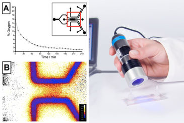 O2 imaging in microfluidic device