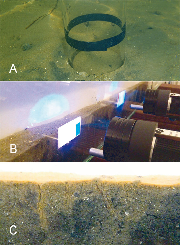 Sediment sampling and set-up of flume experiment with optical O2 sensors