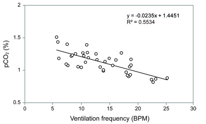 Relationship of abdominal pumping frequency and haemolymph pCO2 in Anax junius nymph