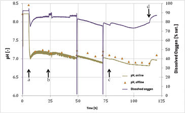 Graph of online DO and pH measurements in CHO cell culture in 20 L cultivation bag