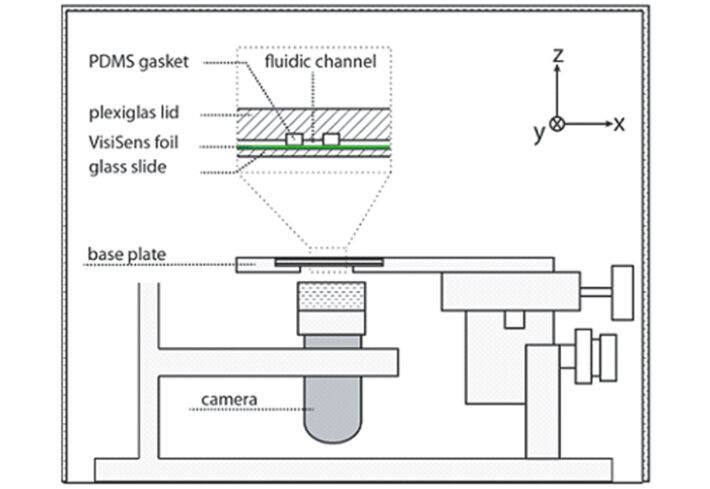 Schematic illustration of set-up for pH measurements in microfluidics