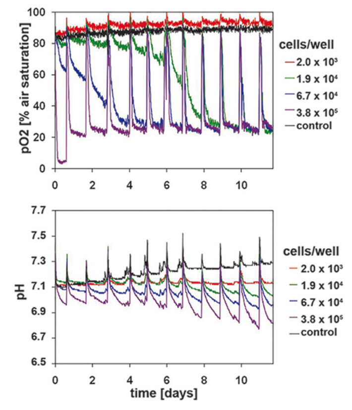 Oxygen and pH kinetics of HaCaT-cells recorded with the SDR