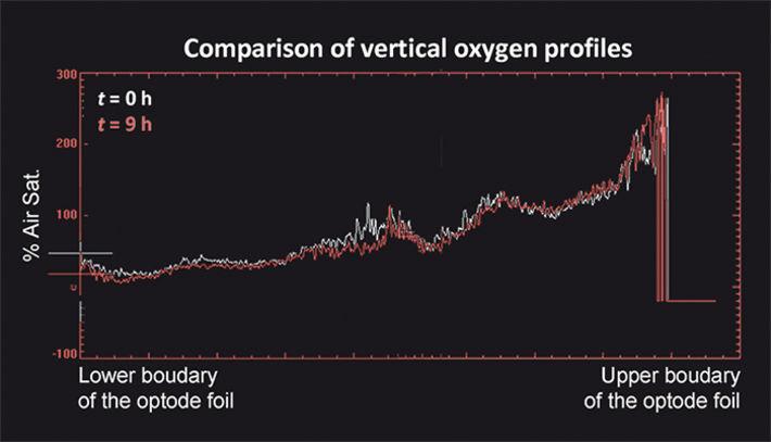 Comparison of vertical O2 profiles