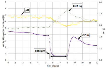 Graph showing O2, pH, CO2 during dark-light tests in photobioreactor