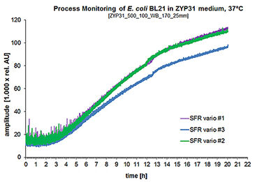 Graph showing the parallel measurement of E. coli BL21 culture in ZYP31 medium at 37 °C on 3 SFR vario devices.