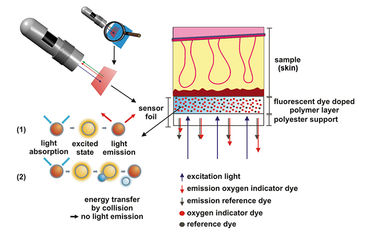 Measurement principle for 2D oxygen imaging of skin flaps