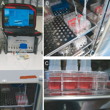 Pictures of experimental set-up to monitor oxygen in bi-layered hydrogels