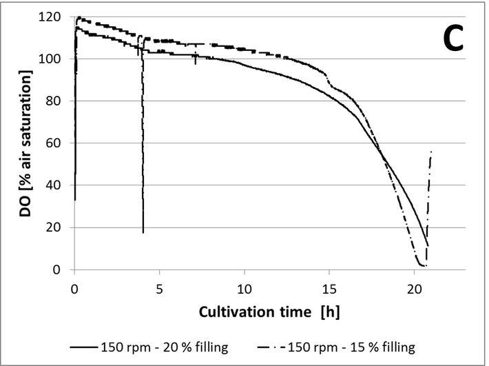 DO measured in C. glutamicum culture