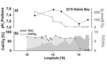 Graph showing pH measured in pore water 1 cm below sediment surface