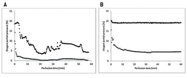 Graph of pO2 in arteria and vein perfusate monitored with optical sensor