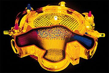 Illustration of perfusable multicompartment capillary membrane bioreactor