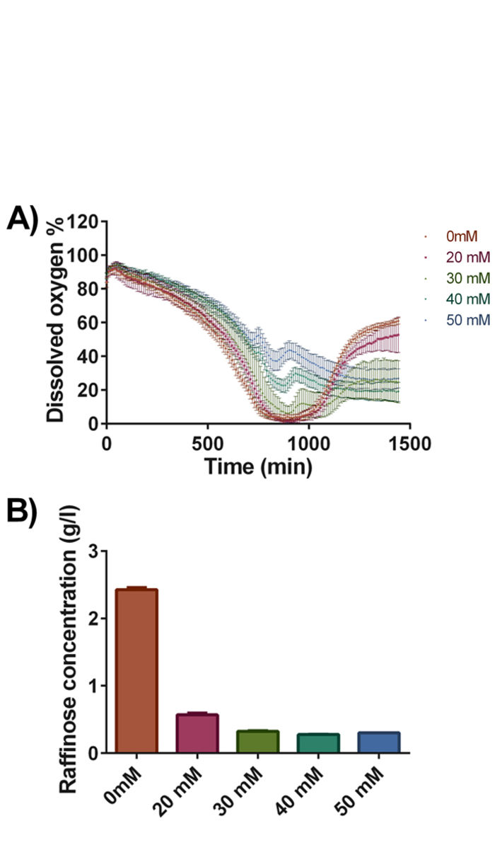 Profile of culture DO and raffinose consumption in antibody producing yeast