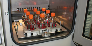 SFR inside the incubator for non-invasive DO & pH monitoring in shake flasks