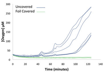 Graph showing effectiveness of adhesive foil limiting O2 influx in wells