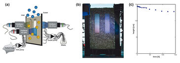 Experimental set-up for O2, pH and CO2 monitoring in diffusion cell