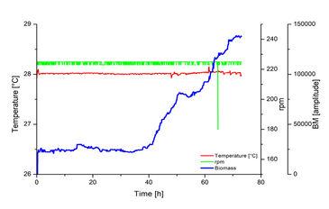 Biomass monitoring in S. cerevisiae culture