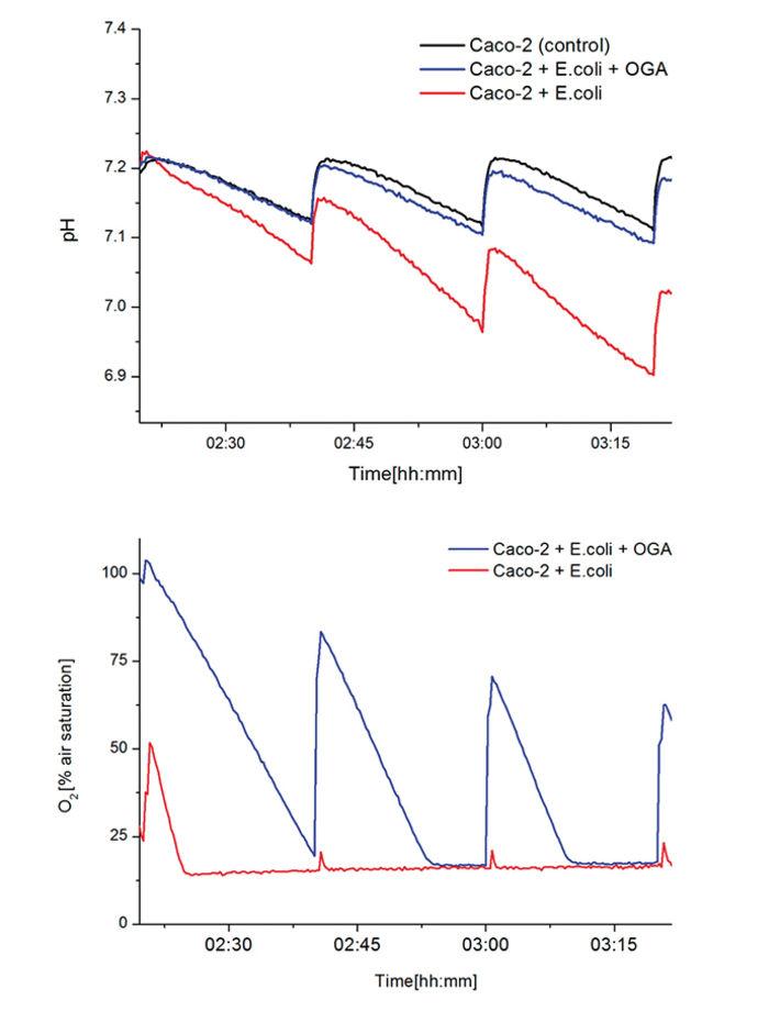 pH and DO kinetics in Caco-2 cells confronted with E.coli/E.coli+OGA