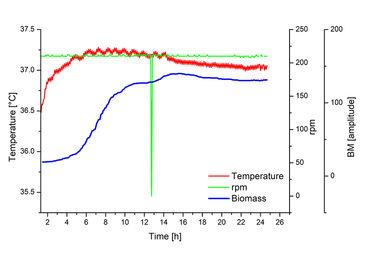 Online biomass measurements in E. coli culture
