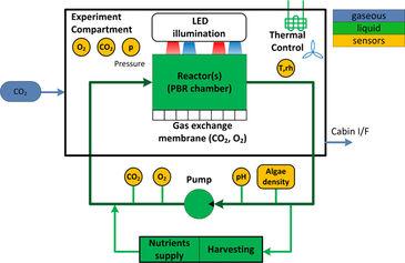 Diagram of photobioreactor experiment