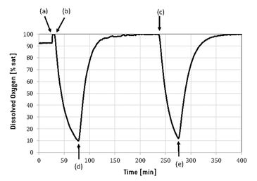 Typical DO profile measured with the Optrode Dual