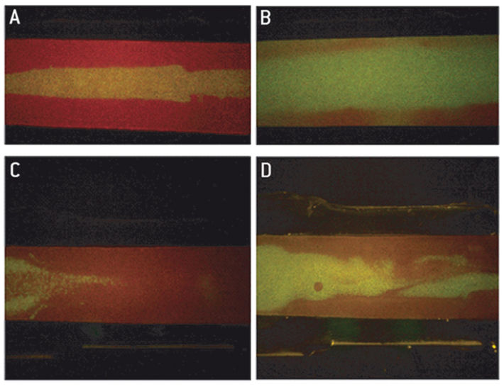 Fluorescence pH imaging in PDMS based channel shaped gasket