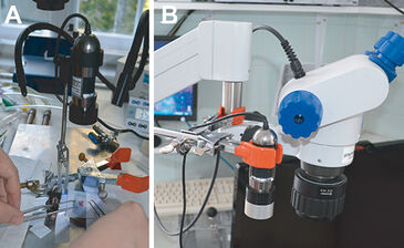 Set-up for microvascular perfusion monitoring with O2 imaging device