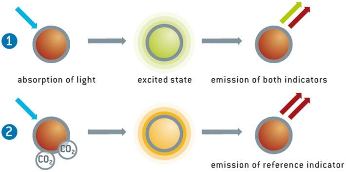 Illustration of optical CO2 measurement principle