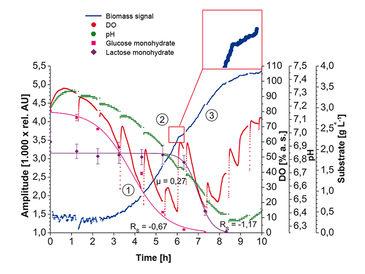 Biomass, DO & pH of E. coli K12 diauxic growth