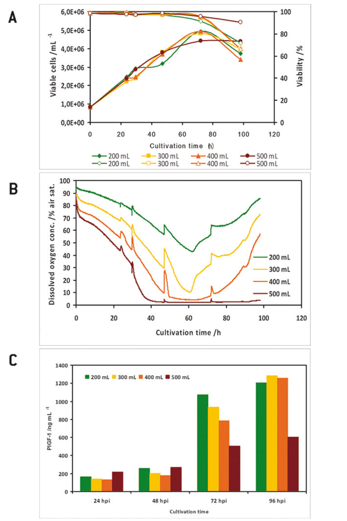 Growth and expression kinetics of baculovirus-infected IPLB-Sf21 AE