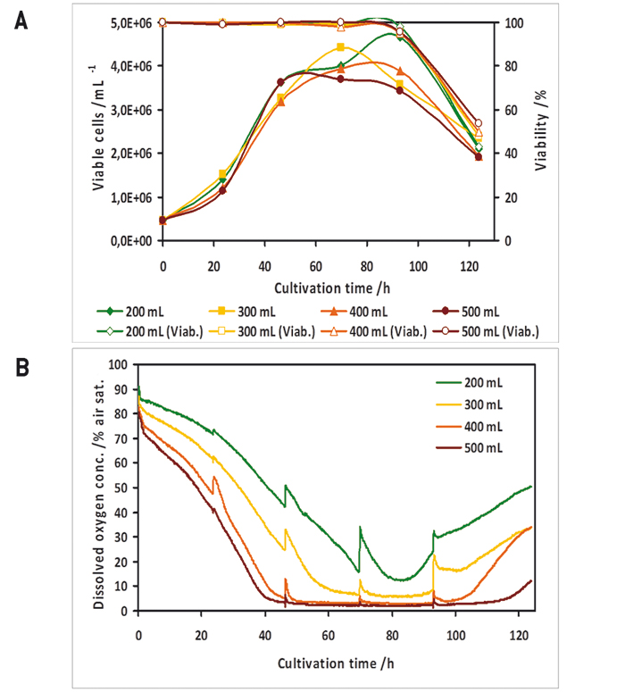 Cell Growth and Recombinant Protein Production in Small